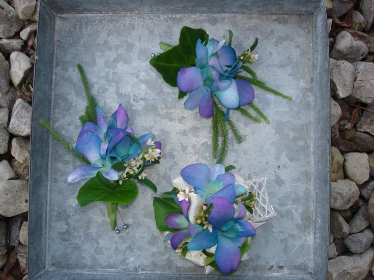 Blue wedding flowers from The Petal Patch, Ltd in McFarland, WI