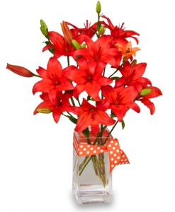 Blazing Orange Lilies