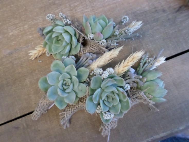 Amazing succulent boutonnieres from Klamath Flower Shop in Klamath Falls, OR