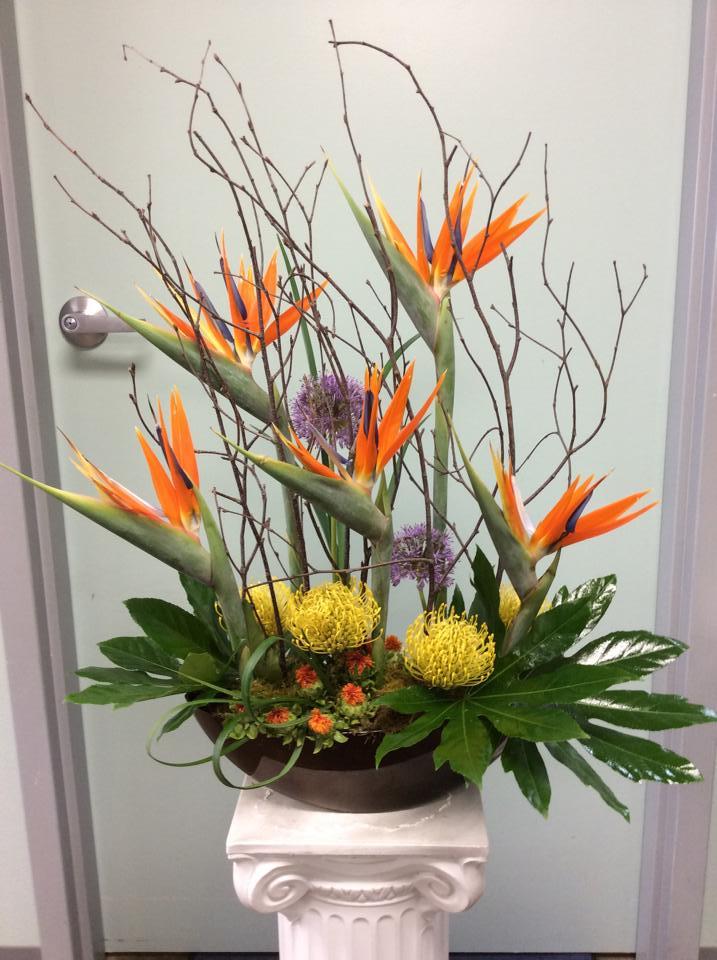 'Birds in Flight' from Brenham Floral Company in Brenham, TX