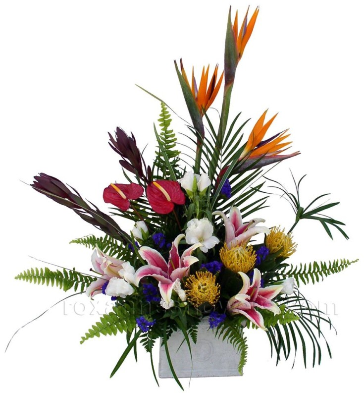 Modern and tropical from Roxanne's Flowers in Akron, PA