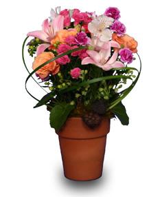 Nanna's Flower Garden