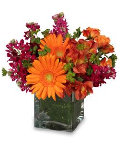 Floral Exuberance