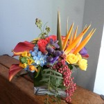 A taste of something tropical from Klamath Flower Shop in Klamath Falls, OR