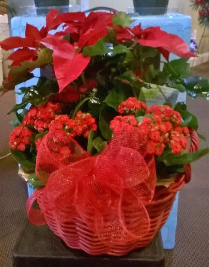 A study in red from Wilma's Flowers in Jasper, AL