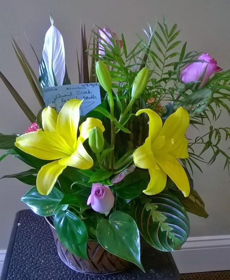 Getting colorful at Wilma's Flowers in Jasper, AL