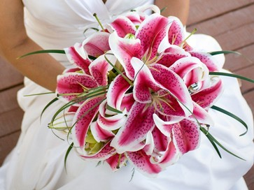 Wedding Flowers Flower Lily