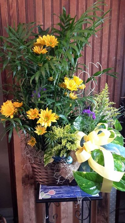 Delightful plant arrangement from Garden Gate Gift and Flower Shop in North Salem, IN
