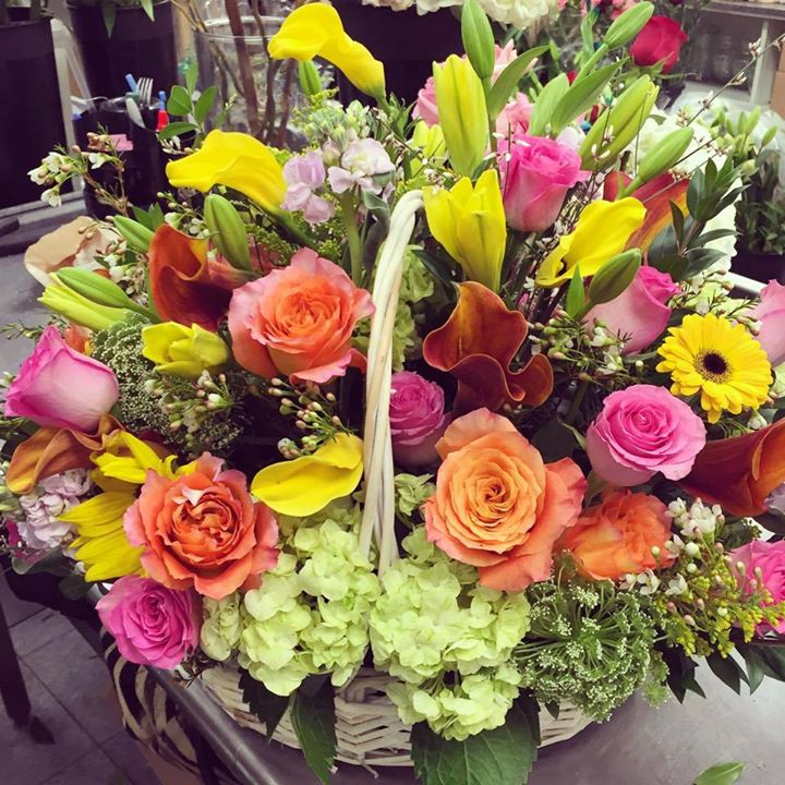 Premium spring basket by Central Square Florist in Cambridge, Massachusetts