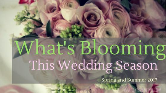 Whats Blooming This Wedding Season Spring And Summer 2017