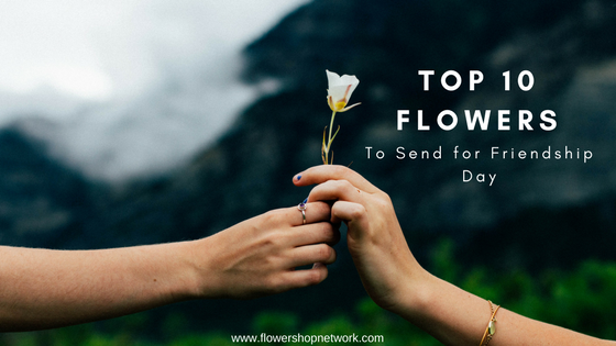 Top 10 Flowers To Send For Friendship Day