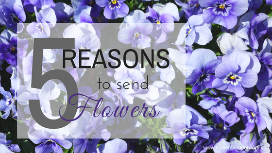 5 Reasons To Send Flowers February 18