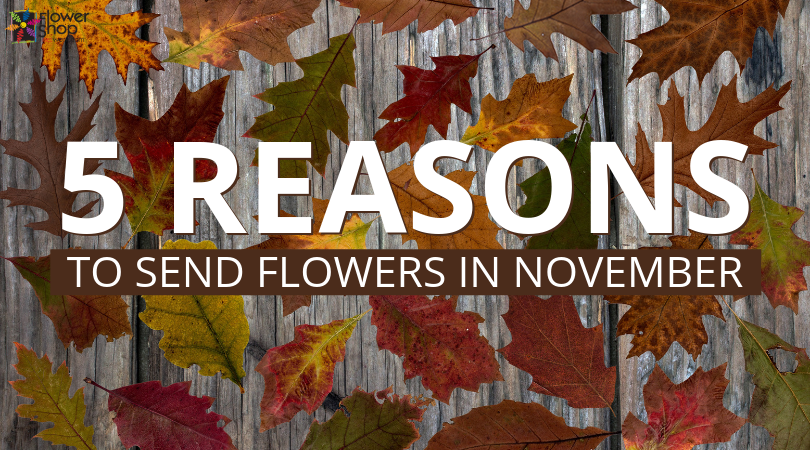 5 Reasons to Send Flowers in November