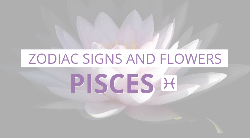 Zodiac Signs and Flowers: Pisces
