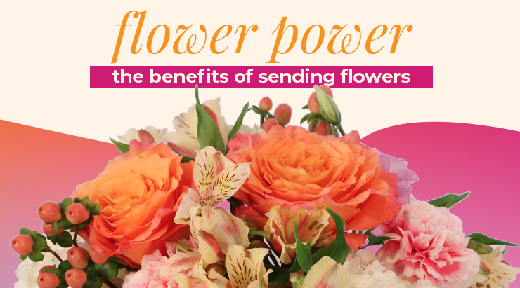 8 Best Reasons To Send Flowers To Your Loved Ones