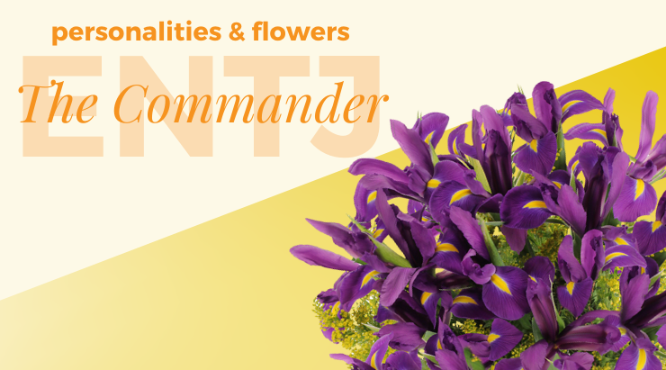 Personalities And Flowers The Commander Entj