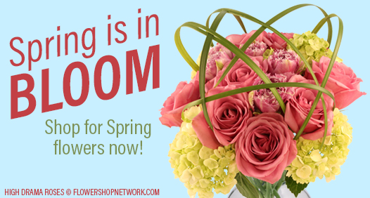 Shop for Spring flowers now!