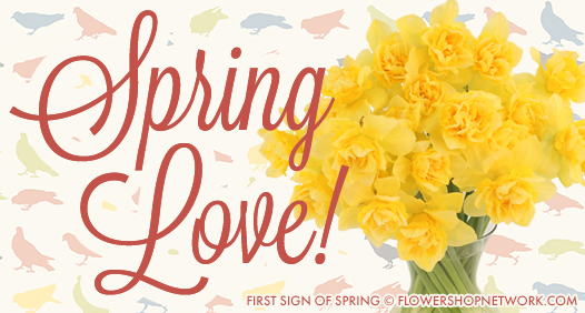 Shop Spring Flowers Today!